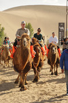 Max Baucus riding a camel by Creator unknown