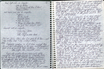 Notebook dated April 17, 1990 by Patricia Goedicke