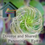 Divorce and Shared Parenting by John Sommers-Flanagan and Sara Polanchek