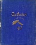 The Sentinel, 1907 by University of Montana (Missoula, Mont.: 1893-1913). Junior class