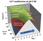 Chapter 2.2: 3-D Topo Surface Visualization of Metal Ion Anti-Buffering: An Unexpected Behavior in Metal–Ligand Complexation Systems