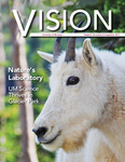 Vision, 2013