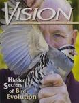 Vision 2008