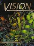 Vision 2004