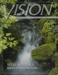 Vision 2003