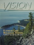 Vision 1999