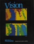 Vision 1990